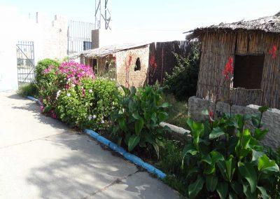 Zonas-ajardinadas-Residencia-Gravemente-afectados-El-Cristo-Roto